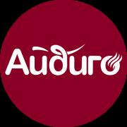 logo_aidigo